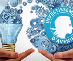 Programme d'Investissement d'Avenir: une analyse et des recommandations du CNESER