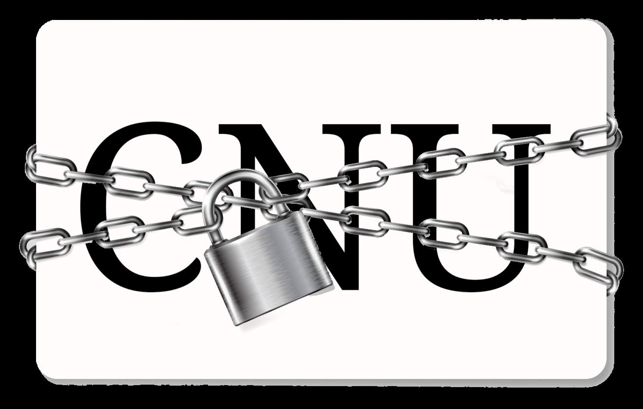 """Les garanties ne sont pas """"apportées afin de conforter le CNU dans ses fonctions"""""""