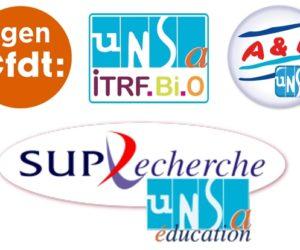 Les organisations syndicales ne siégeront pas au CNESER